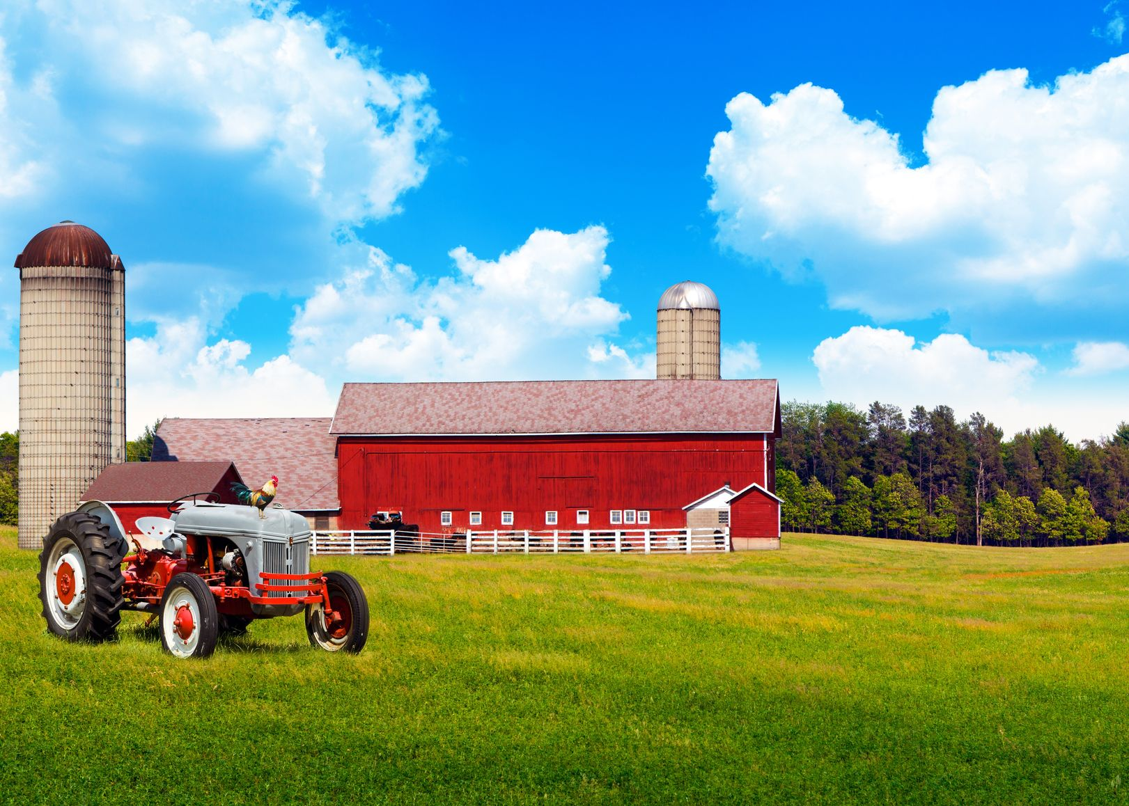 Tampa, Odessa, Lutz, FL. Farm & Ranch Insurance